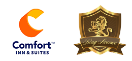 Comfort Inn and Suites King Avenue